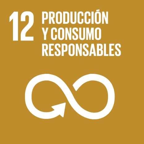 ODS PRODUCCION Y CONSUMO RESPONSABLES