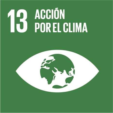 ODS ACCION POR EL CLIMA